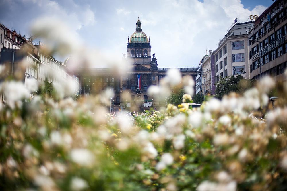 Blumen vor dem Prager National Museum am Wenzelsplatz.