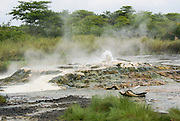 Semuliki National Park in western Uganda Sulphur reach Sempaya hot springs