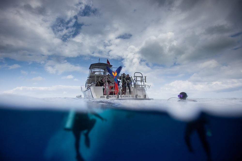 Over-under or under-over split shot of two dive boats on the Caribbean Sea and two scuba divers underwater in Gladden Spit & Silk Cayes Marine Reserve, off the coast of Placencia, Belize.