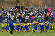 Salisbury Mills, New York  - Washingtonville Gold football players, coaches and fans in the stands celebrate a victory over  Middletown in an Orange County Youth Football League Division I playoff game at Lasser Field on Sunday, Nov. 3, 2013.