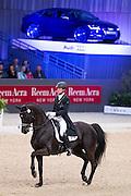 Marc Boblet - Noble Dream<br /> Indoor Brabant 2014<br /> © DigiShots