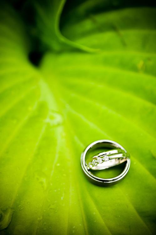 Caitlin & Alex's rings on leaf at Walton Island, Elgin, IL