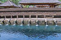 Sacred springs at Pura Kebo Edan near ubud, bali, indonesia