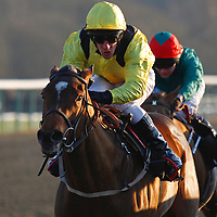 Shabora and Dominic Fox winning the 3.30 race