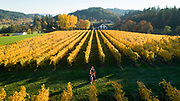 Beacon Hill family & fall colors, Yamhill-Carlton AVA, Willamette Valley, Oregon