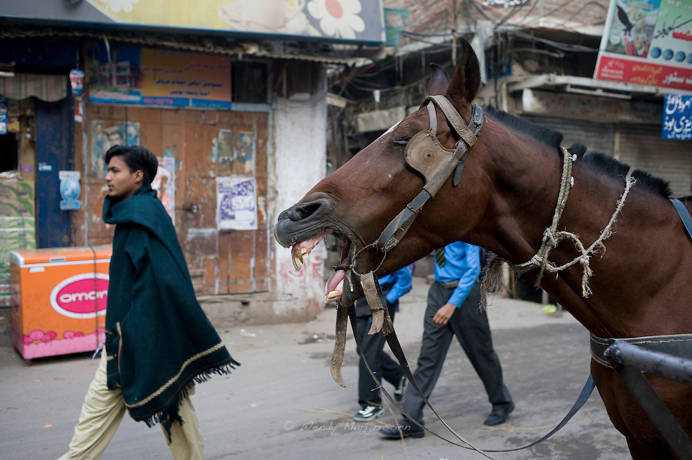 Street scene in the old city of Lahore. Pakistan, 2009