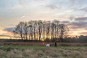© Licensed to London News Pictures. 20/12/2014. richmond, UK People walk their dogs at sunrise in Richmond Park, West London, today 20th December 2014. Photo credit : Stephen Simpson/LNP