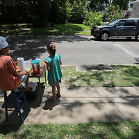 grady Bartlett, 12, left, and Celia Johnston, 7, wait for motorists to stop at Barlett's grandmother's house on Jefferson Street Monday. Barlett was trying to raise enough money to buy a new video game and give the rest to a local charity.