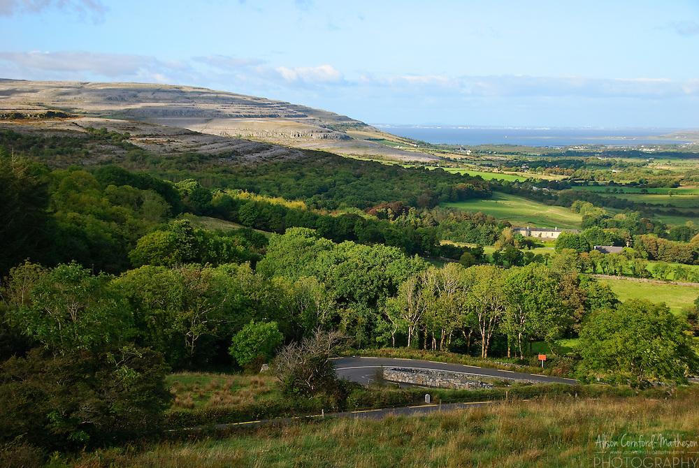"The Burren or Boireann, meaning ""great rock"" is a barren rocky landscape in county Clare, Ireland."