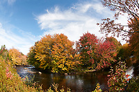Fall colours as leaves turn to reds and golds in the trees over the Petite Rivierre river, Nova Scotia, Canada