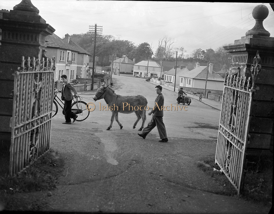 Castlebar Feature - Special for Liam Robinson. Co. Mayo <br /> <br /> 06/01/1952
