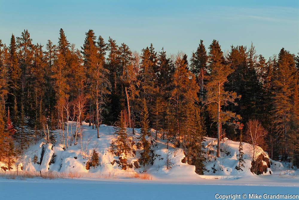 Forested shoreline on Lake of the Woods in winter<br />Kenora<br />Ontario<br />Canada