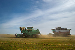 May 27, 2019 - Tambov Region, Tambov region, Russia - Harvesting of wheat in the Tambov region (Credit Image: © Demian Stringer/ZUMA Wire)