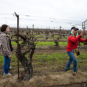 Campesinas work the fields tying grape vines near Fresno, California. Writer, Mily, left, talks with a worker. Please contact Todd Bigelow directly with your licensing requests.