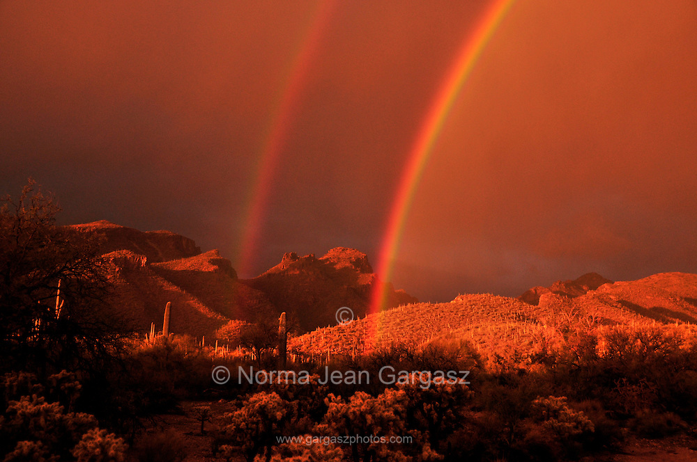 A double rainbow highlights the Bear Canyon area in the Santa Rita Mountains, Coronado National Forest, Sonoran Desert, Tucson, Arizona, USA.