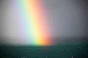 Cottesloe rainbow just off the shore break at I'sos