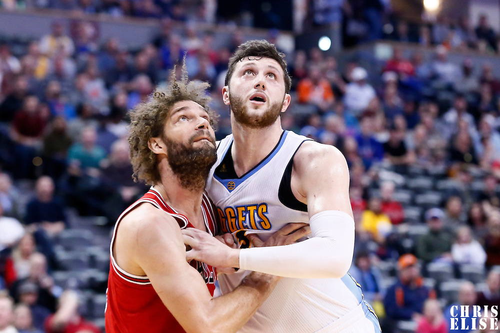 22 November 2016: Chicago Bulls center Robin Lopez (8) vies for the rebound with Denver Nuggets center Jusuf Nurkic (23) during the Denver Nuggets 110-107 victory over the Chicago Bulls, at the Pepsi Center, Denver, Colorado, USA.