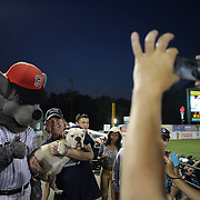 Rocky, the New Britain Rock Cats mascot with fans during the 'Bark in the Park' owners with their dogs day at the New Britain Rock Cats Vs Binghamton Mets Minor League Baseball game at New Britain Stadium, New Britain, Connecticut, USA. 2nd July 2014. Photo Tim Clayton