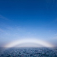 Norway, Svalbard, Spitsbergen Island, Midday sun creates ?Fog Bow? in North Atlantic on summer morning
