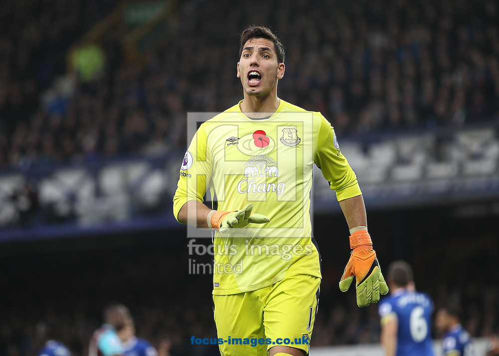 Joel Robles of Everton during the Premier League match against West Ham United at Goodison Park, Liverpool.<br /> Picture by Michael Sedgwick/Focus Images Ltd +44 7900 363072<br /> 30/10/2016