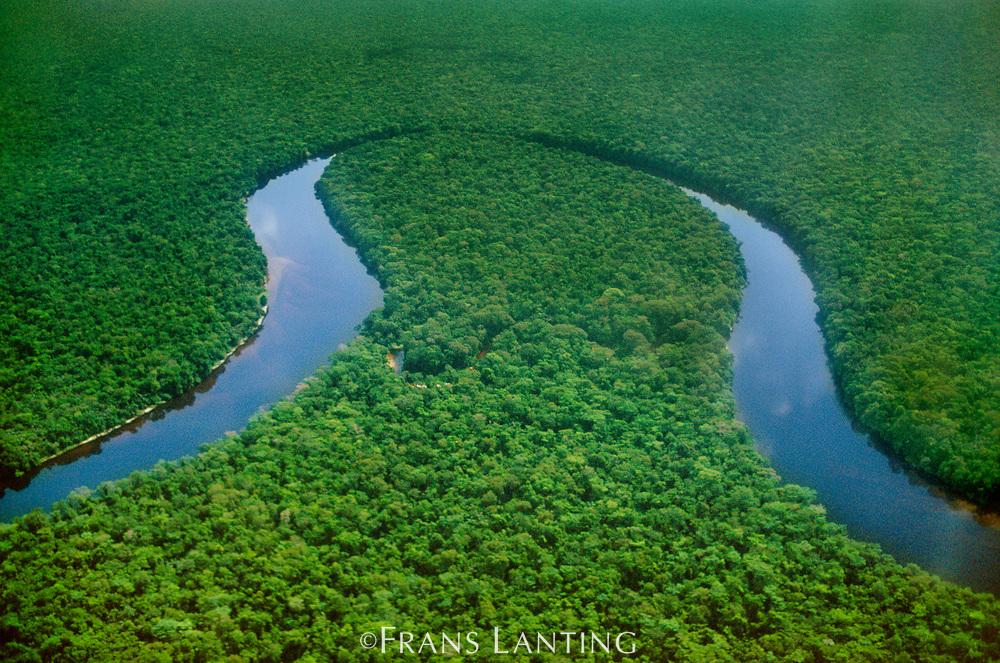 Meandering river, Congo Basin, Congo (DRC)