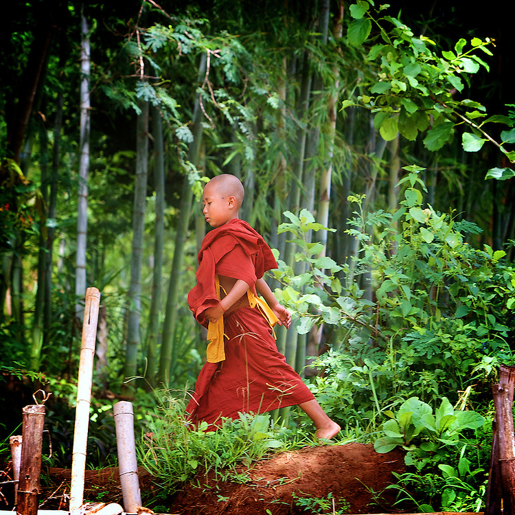 Young monk at Indein, Inle Lake, Myanmar.