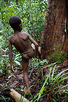 This young boy is beating the root of the tree with his foot, the sound will echo some considerable distance through the forest. West Papua is home to over 300 tribes. They have inhabited the island for more than 40,000 years. Many of the last remaining tribal cultures on our planet can be found in West Papua. An astounding 15% of the world's languages are spoken there, by just 0.01% of the global population.