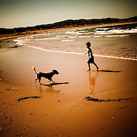 A boy and a dog playing on a beach in summer