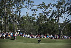 August 21, 2017 - Ponte Vedra Beach, Florida, U.S. - TIGER WOODS lines up his putt on 14 green during The Players Championship 2018 at TPC Sawgrass. (Credit Image: © Bill Frakes via ZUMA Wire)