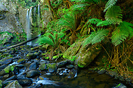Oceania; Australia; Australian; Down Under; Victoria; Great Otway National Park, Hopetoun Falls