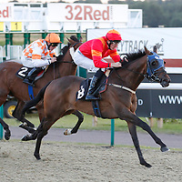 Santadelacruze and George Baker winning the 8.30 race
