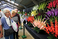© Licensed to London News Pictures.14/07/15<br /> Harrogate, UK. <br /> <br /> Visitors look at the displays of flowers on the opening day of the Great Yorkshire Show.  <br /> <br /> England's premier agricultural show opened it's gates today for the start of three days of showcasing the best in British farming and the countryside.<br /> <br /> The event, which attracts over 130,000 visitors each year displays the cream of the country's livestock and offers numerous displays and events giving the chance for visitors to see many different countryside activities.<br /> <br /> Photo credit : Ian Forsyth/LNP