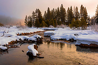 090-P102243<br /> <br /> Donner Memorial State Park<br /> &copy; 2019, California State Parks.<br /> Photo by Brian Baer