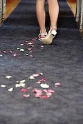 wedding photographer rotorua, wedding photographer tauranga, wedding photographer new zealand, wedding photography bay of plenty new zealand
