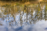 Vughtse Heide