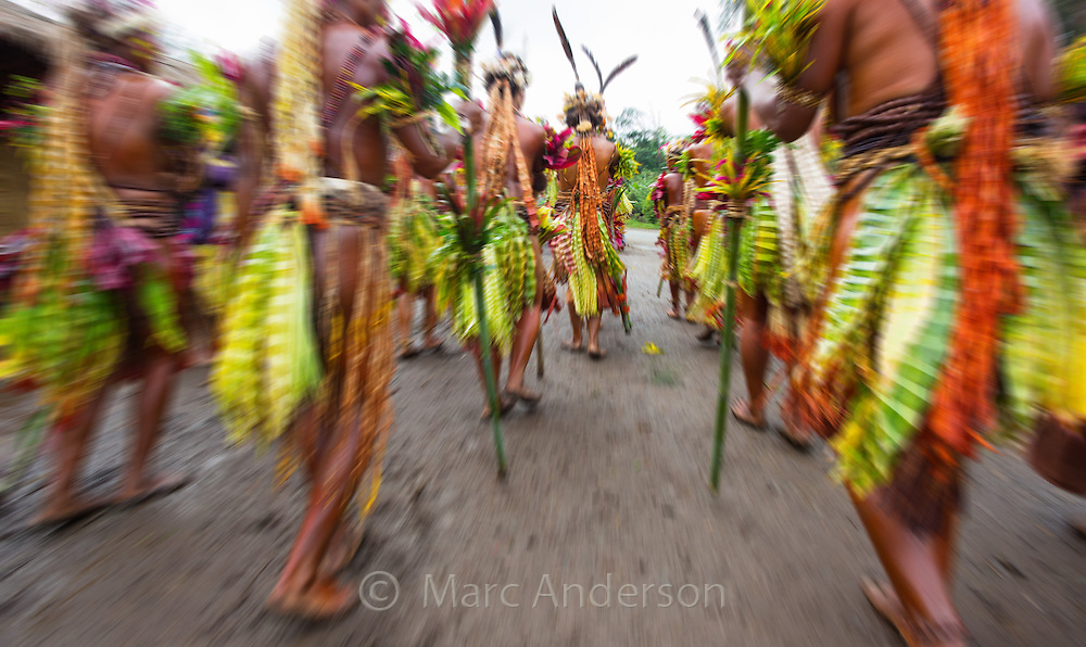 Men and women from the Selehoto Alunumuno tribe in traditional dress and dancing in a small village in the Papua New Guinea highlands.