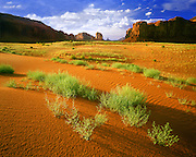 0195-1052LVT ~ Copyright: George H. H. Huey ~ Monument Valley. Sand dunes and mesas. Monument Valley Tribal Park, Arizona.