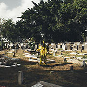 An operator of the environmental security service passes a larvicide in the Santo Amaro cemetery.