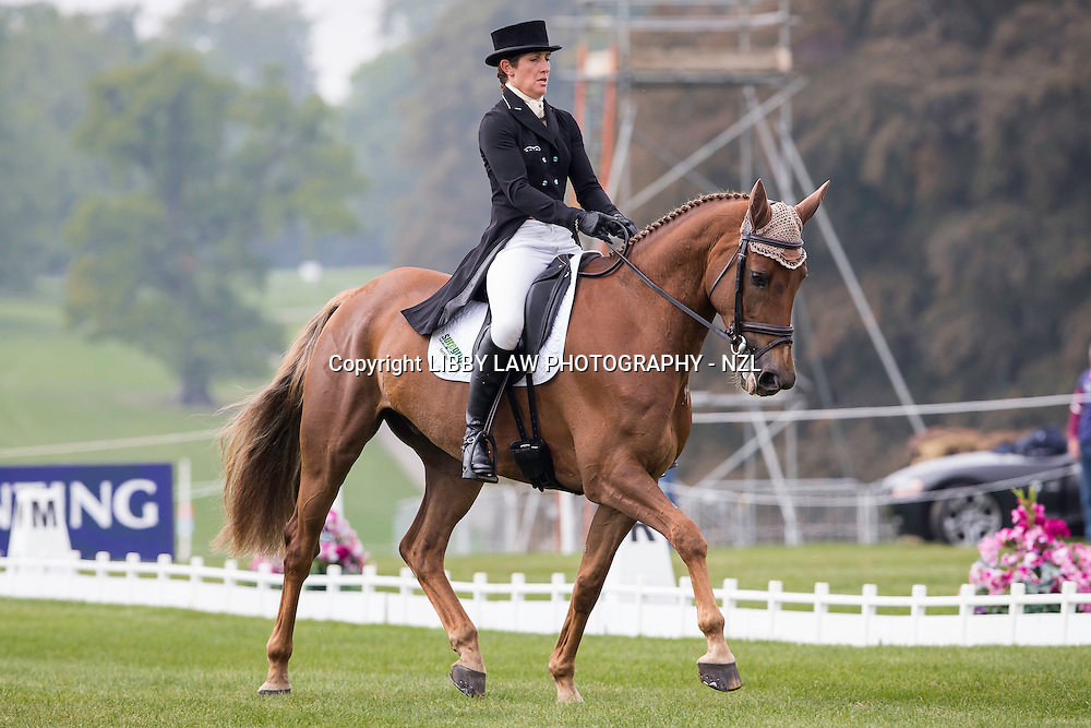 NZL-Caroline Powell (HALLTOWN HARLEY) INTERIM-=20TH: CIC3* 8&9YO: FIRST DAY OF DRESSAGE: 2014 GBR-Blenheim Palace International Horse Trial (Thursday 11 September) CREDIT: Libby Law COPYRIGHT: LIBBY LAW PHOTOGRAPHY - NZL
