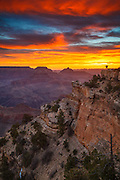 Celebrating sunrise at the Grand Canyon.