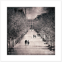 Jardin des Tuileries, Paris, France - Monochrome version. Inkjet pigment print on Canson Infinity Rag Photographique 310gsm 100% cotton museum grade Fine Art and photo paper.<br />