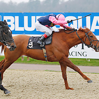 Rollin n' Tumblin and J Quinn winning the 2.00 race
