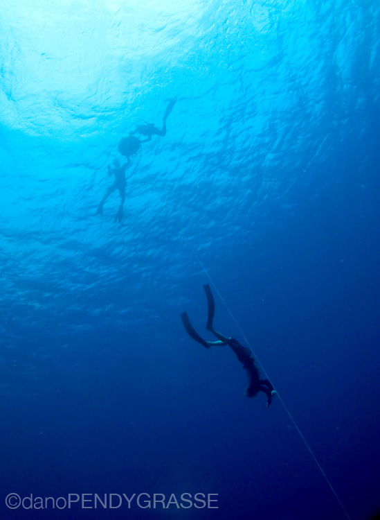 Freediving in Roatan, Honduras.