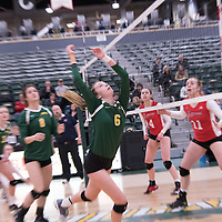 1st year setter Elizabeth Tooth (6) of the Regina Cougars in action during Women's Volleyball home game on January 21 at Centre for Kinesiology, Health and Sport. Credit: Arthur Ward/Arthur Images