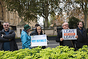 Members of the public Commons. Steve Bray for Remain behind. London. 16 Nov 2018
