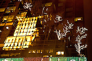 New York. christmas on fifth avenue. mirror games ; christmas trees on Trump tower. New york - Manhattan / noel sur cinquieme avenue. reflets   sur le trump tower  New york - Etats unis