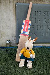 A Cricket bat and the Aussie Wallaby mascot are left out pitchside in tribute to Australian cricketer Phillip Hughes who passed away in the week after sustaining an injury whilst batting for South Australia at the Sydney Cricket Ground- Photo mandatory by-line: Rogan Thomson/JMP - 07966 386802 - 29/11/2014 - SPORT - RUGBY UNION - London, England - Twickenham Stadium - England v Australia - QBE Autumn Internationals.