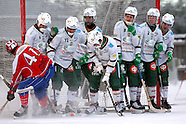 Bandyliiga 2012-13