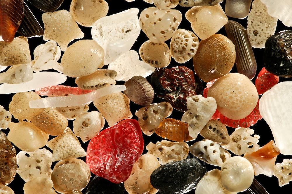 [Digital focus stacking] Abraded calcareous sand sample, Sulawesi, Indonesia. Diagonal of frame approx. 6 mm   Abgerollter Kalksand mit ebenfalls abgerollten Vulkanasche-Stückchen, Sulawesi, Indonesien. Bilddiagonale ca. 6 mm