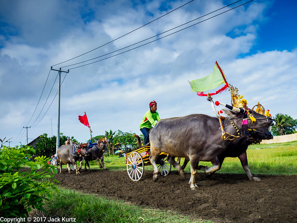 30 JULY 2017 - TUWED, JEMBRANA, BALI, INDONESIA:     PHOTO BY JACK KURTZ